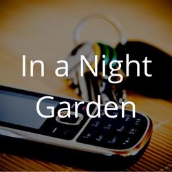 In a Night Garden